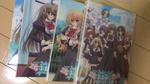 『乙女はお姉さまに恋してる』DVDパッケージ